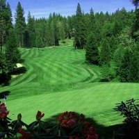 Golf Resort, Golfing